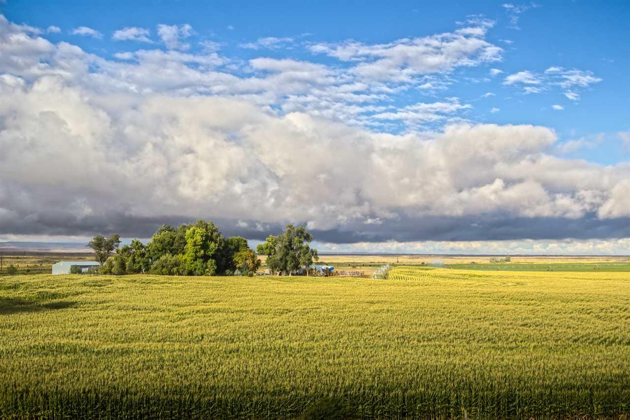 农场 为 销售 在 1854 S 750 E 1854 S 750 E Bliss, 爱达荷州 83314