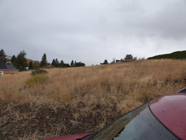 Land for Sale at Tbd King Street Cottonwood, Idaho 83522