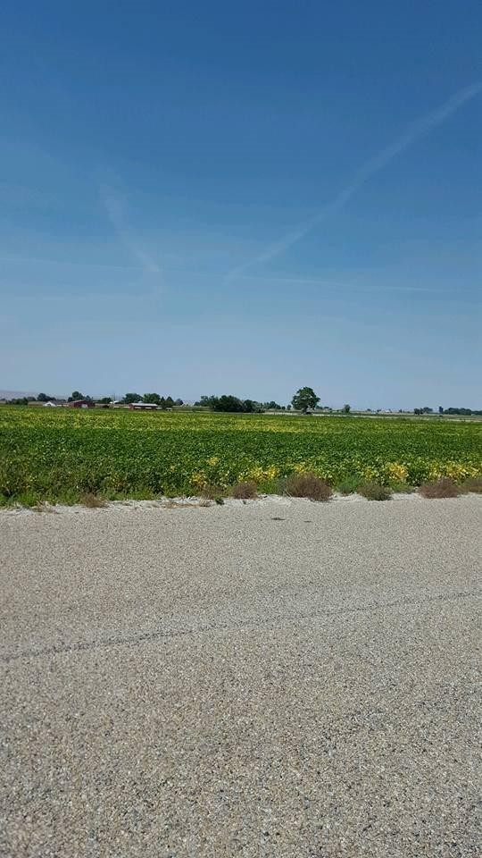 TBD Stewart Ln,Wilder,Idaho 83676,Farm & Ranch,TBD Stewart Ln,98638792