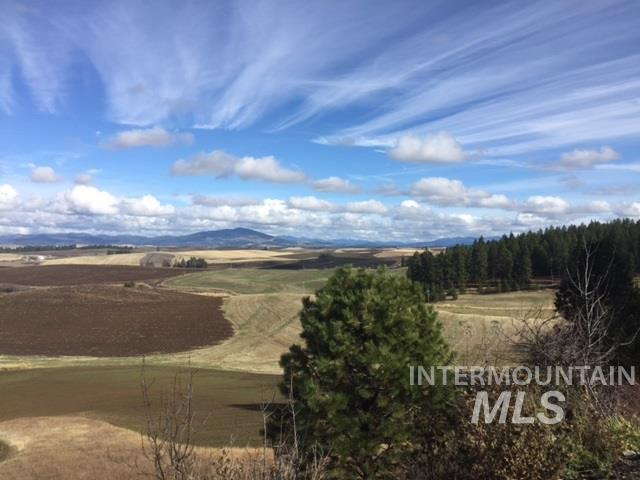 Agricultural Land for Sale at Rudd Rd (Parcel#1) Rudd Rd (Parcel#1) Viola, Idaho 83872
