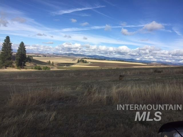 Agricultural Land for Sale at E Cove Rd (Parcel #4) E Cove Rd (Parcel #4) Viola, Idaho 83872