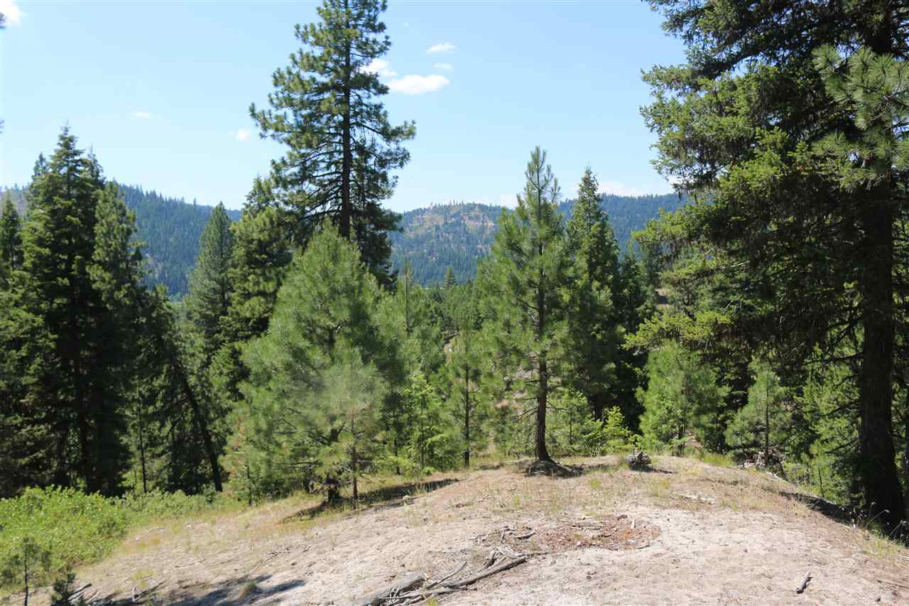 Land for Sale at Tbd Packer John Road Cascade, Idaho 83611