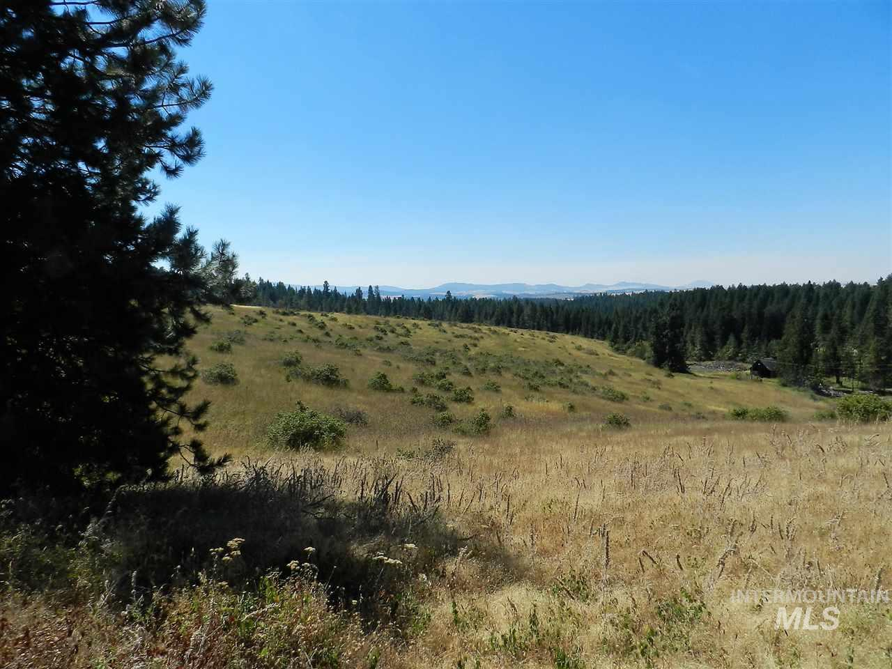TBD Gold Hill Road (Parcel #3), Princeton, ID 83857