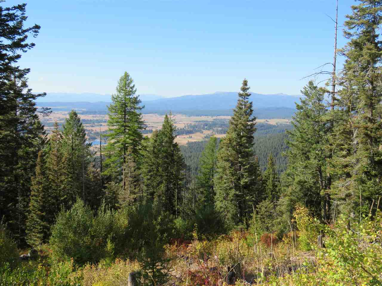 Ranch for Sale at Paddy Flat Road McCall, Idaho 83638
