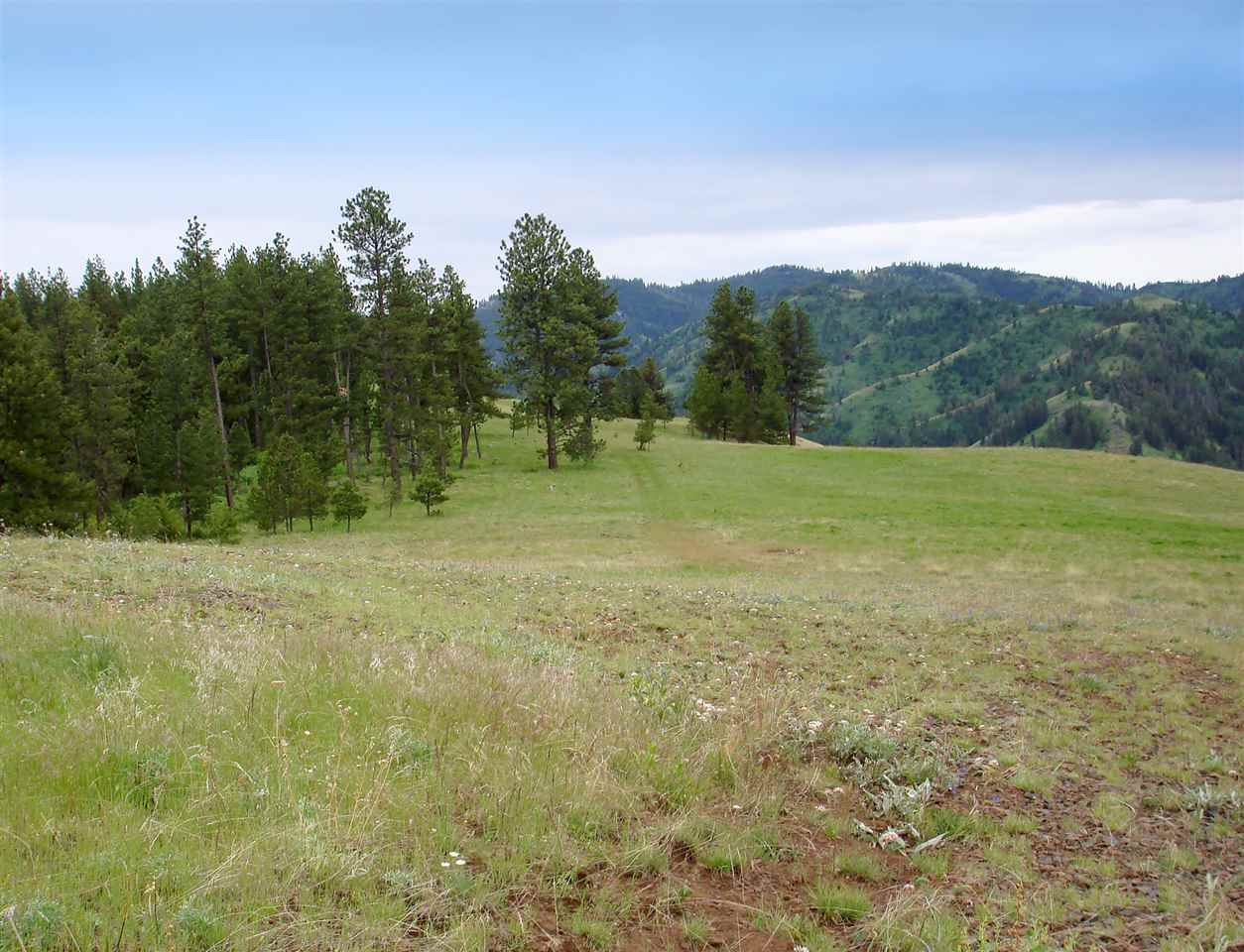 Land for Sale at Tbd Joseph Rd White Bird, Idaho 83554