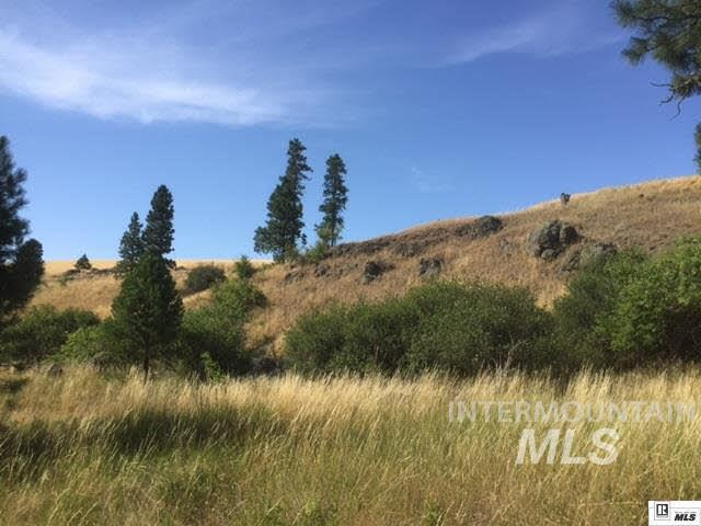 Land for Sale at Tbd Lenville Rd Genesee, Idaho 83832