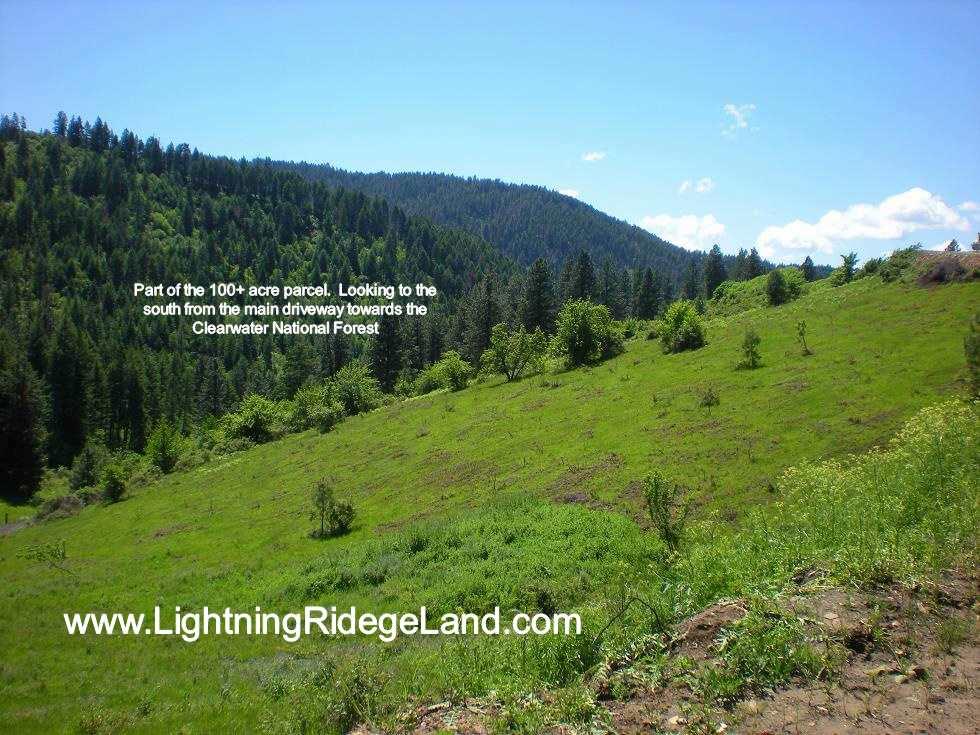 Land for Sale at 116 Acres Lightning Creek Rd Grangeville, Idaho 83605
