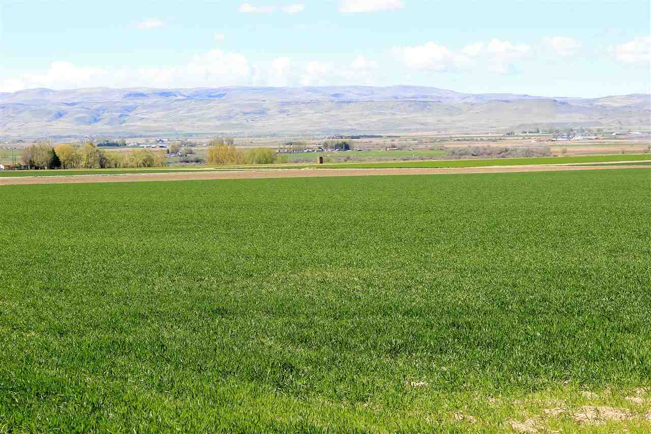 Land for Sale at 0 Crystal Ln Wilder, Idaho 83676