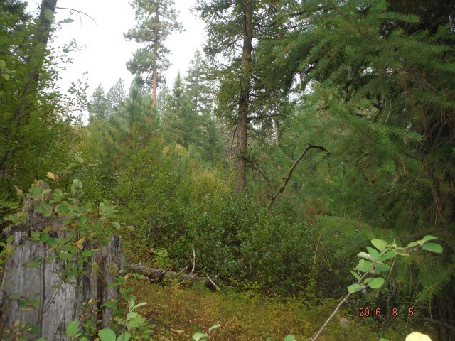 Lot 12 Payette River Ranchettes # 2, Horseshoe Bend, ID 83602