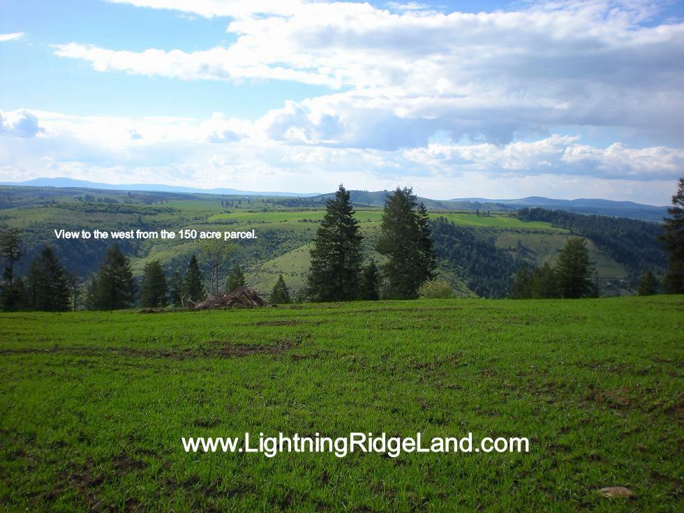 Land for Sale at 150 Acres Lightning Creek Rd Grangeville, Idaho 83530