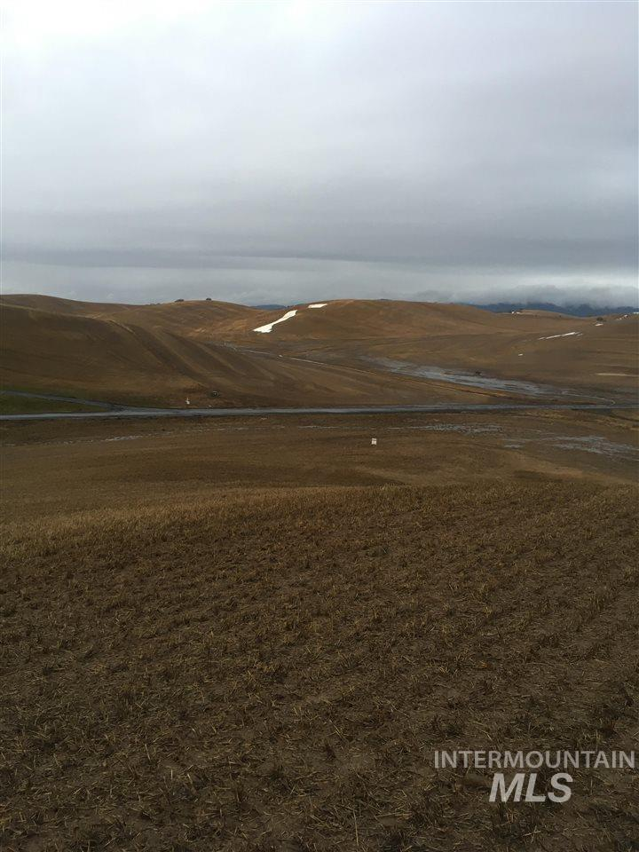 Land for Sale at Tbd Orville Boyd Rd Pullman, Washington 99163