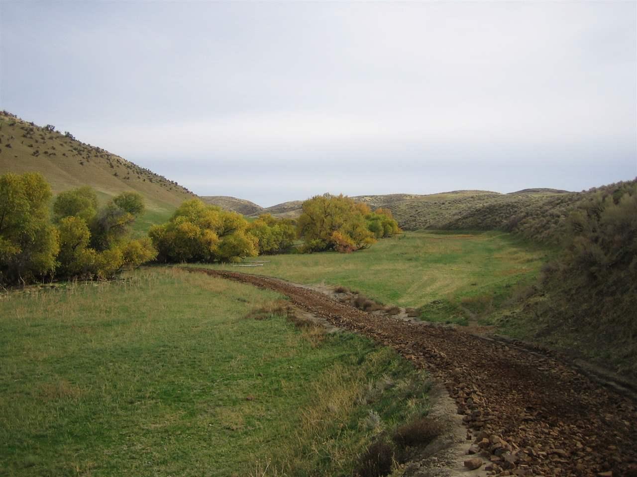 农场/牧场 为 销售 在 Tbd Mann Creek Road Weiser, 爱达荷州 83672
