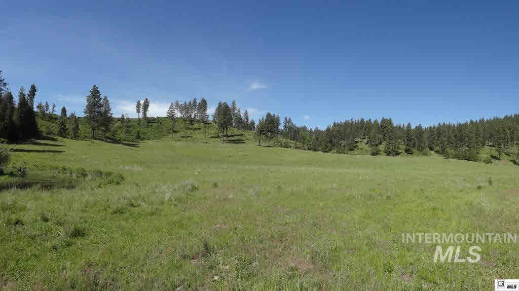 Terreno por un Venta en Tbd Hatter Creek Road Princeton, Idaho 83857