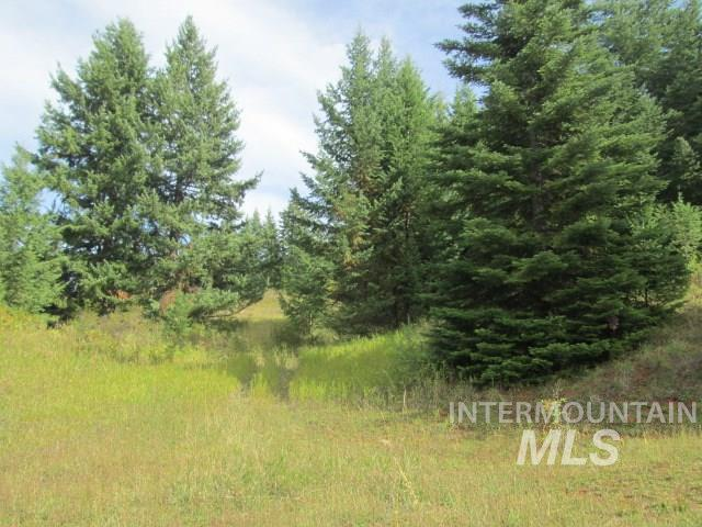 土地 为 销售 在 000 Rivers Edge Road Elk City, 爱达荷州 83525