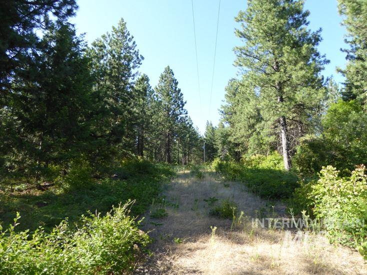 Land for Sale at Tbd Snowberry Lane Lot 13 Plummer, Idaho 83851