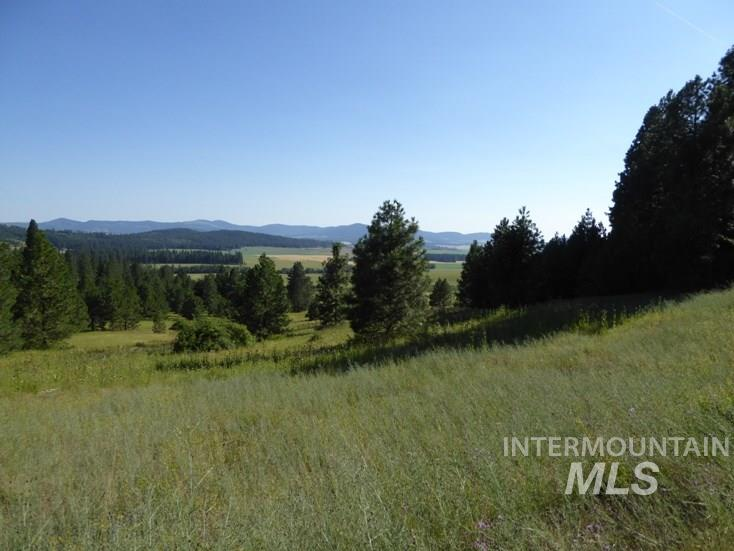 Land for Sale at Tbd Snowberry Lane Lot 7 Plummer, Idaho 83851