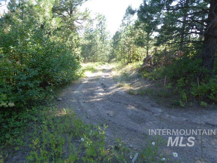 Land for Sale at Tbd Benewah Rd. Lot 24 Plummer, Idaho 83851