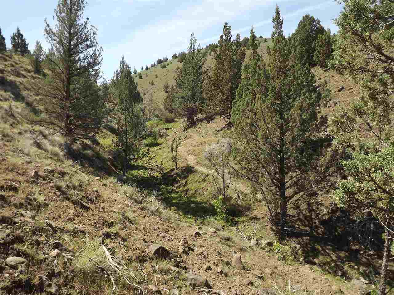 Land for Sale at 0 S Fork Rd John Day, Oregon 97825