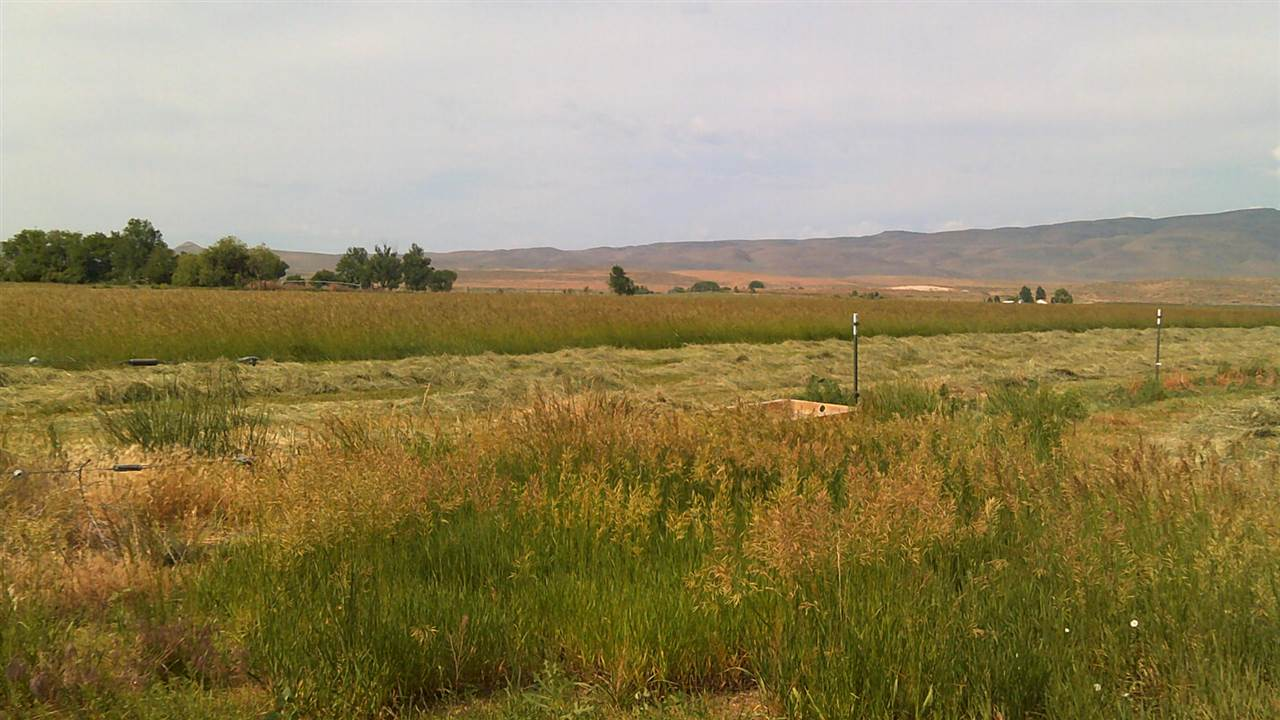 Farm for Sale at 4942 John Day HWY 4942 John Day HWY Vale, Oregon 97918