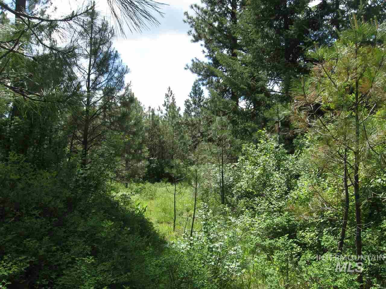 土地 为 销售 在 Tbd Davis Road Viola, 爱达荷州 83872