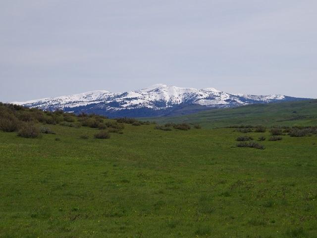 土地 为 销售 在 Tbd Whiteman Ln Indian Valley, 爱达荷州 83632