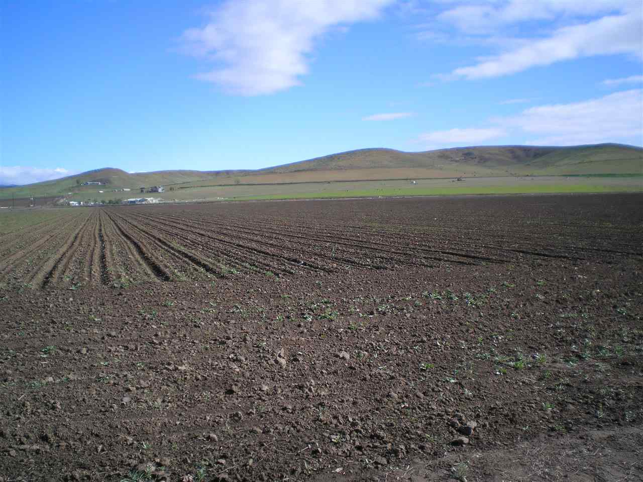 Agricultural Land 为 销售 在 TBD Indianhead Road TBD Indianhead Road Weiser, 爱达荷州 83672