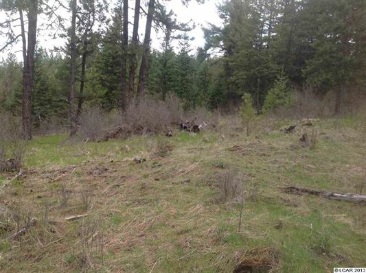 Land for Sale at Parcel 1820 Red Willow Rd Orofino, Idaho 83537