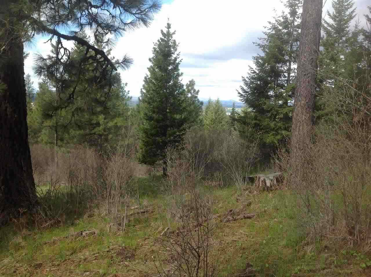 Recreational Property for Sale at Parcel 1810 Red Willow Road Parcel 1810 Red Willow Road Orofino, Idaho 83537