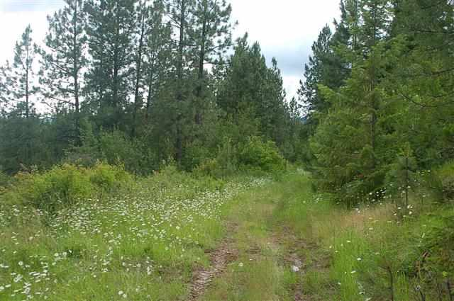 Lot 20 Red Willow Road, Outside City Limits, ID 83537