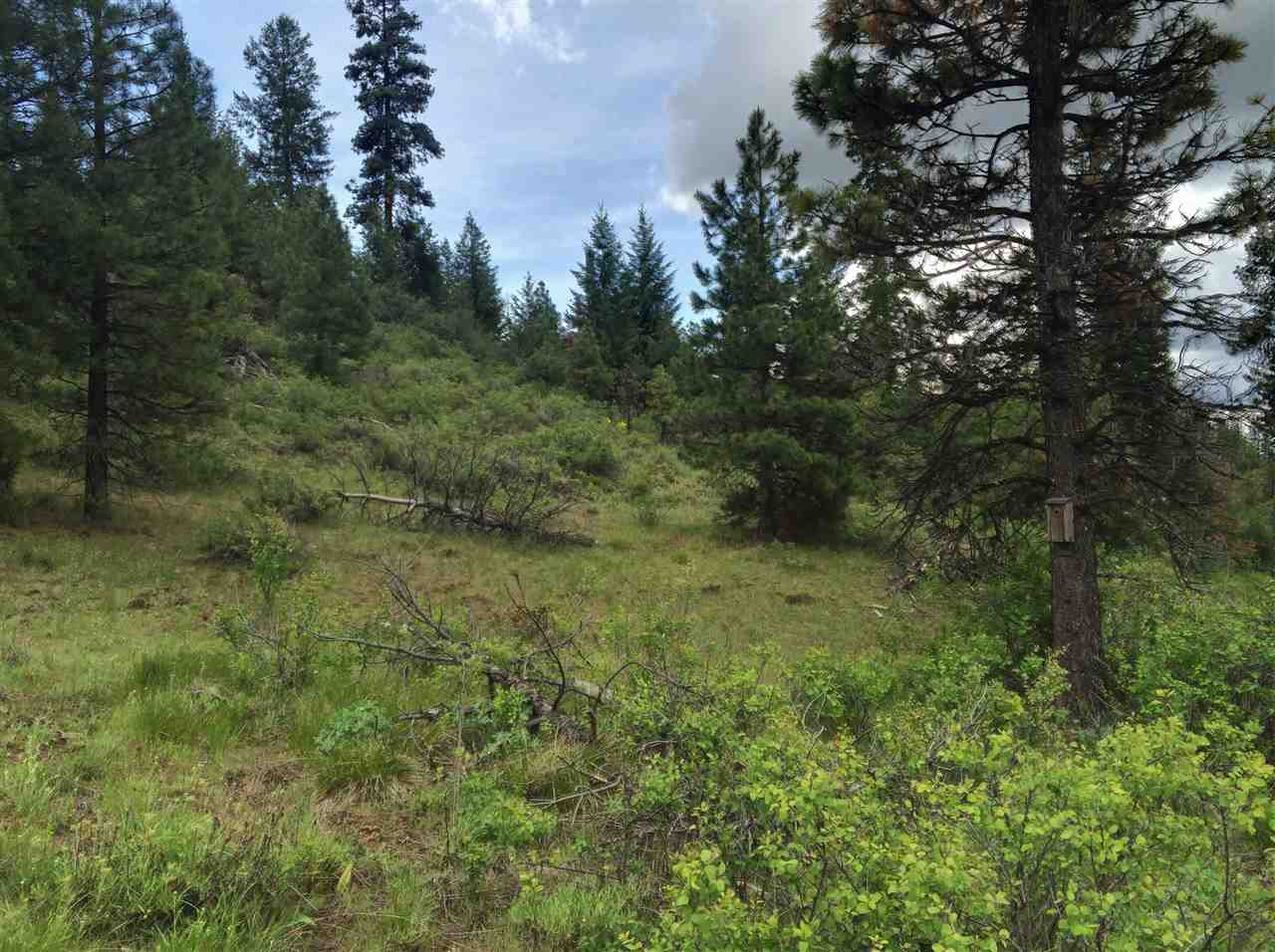 Lot 25 Forest Highlands, Boise, ID 83716