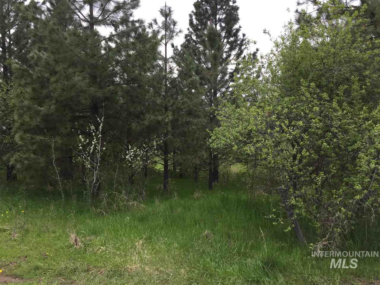 TBD DIVISION ST, Deary, ID 83823