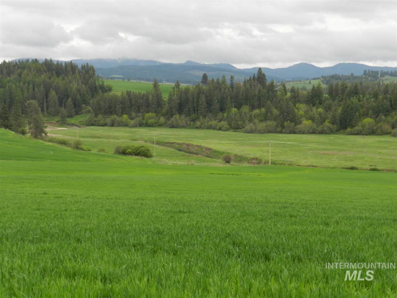 Development for Sale at NNA Hwy 6 NNA Hwy 6 Potlatch, Idaho 83855
