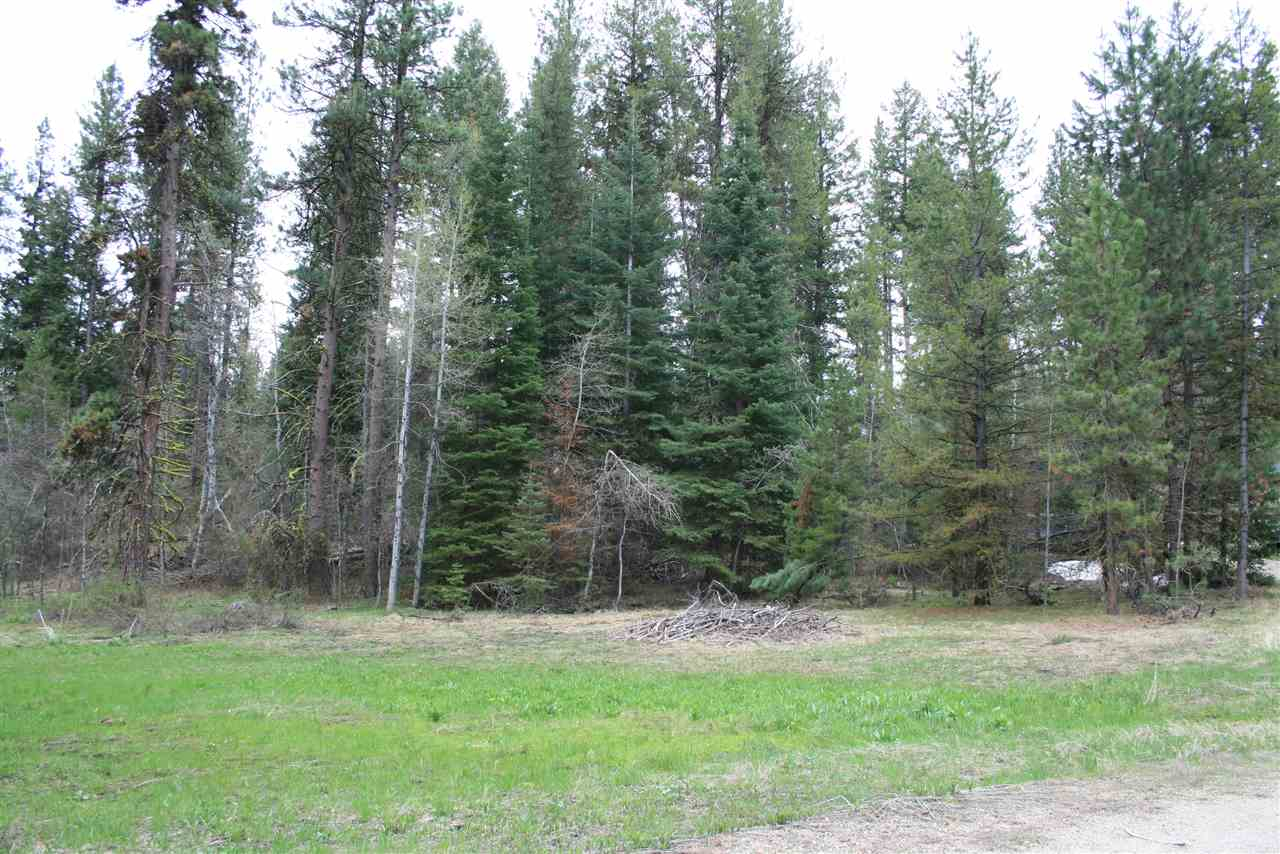 Land for Sale at 171 Pine Valley Drive 171 Pine Valley Drive Cascade, Idaho 83611