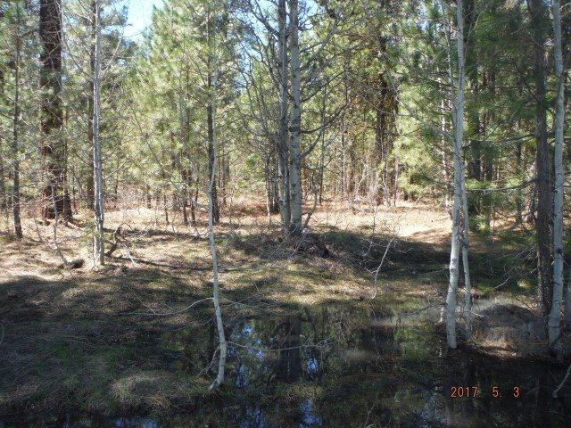 土地 为 销售 在 Tract 38 Primrose Ln. Placerville, 爱达荷州 83631