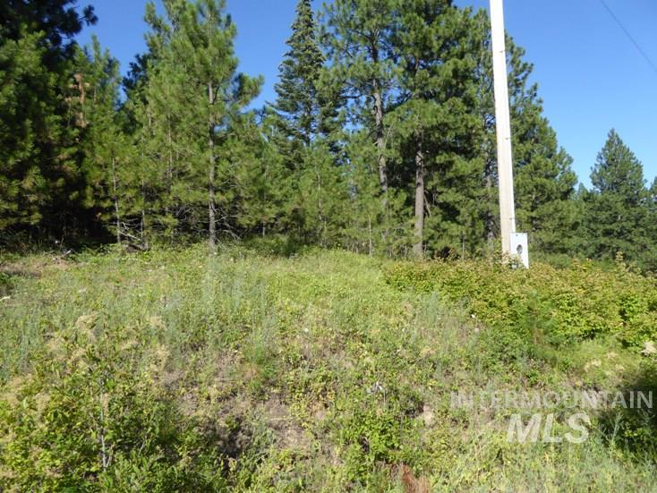 Land for Sale at Nna Snowberry Lane Lot 10 Tensed, Idaho 83851