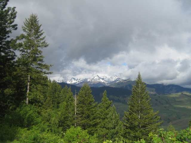 Land for Sale at A Denny Creek Rd Pollock, Idaho 83547
