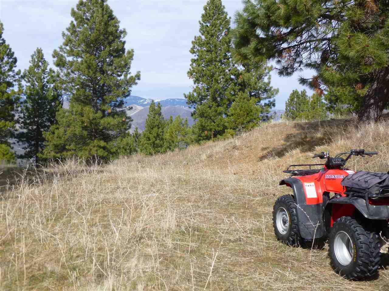 Land for Sale at B Denny Creek Rd Pollock, Idaho 83547