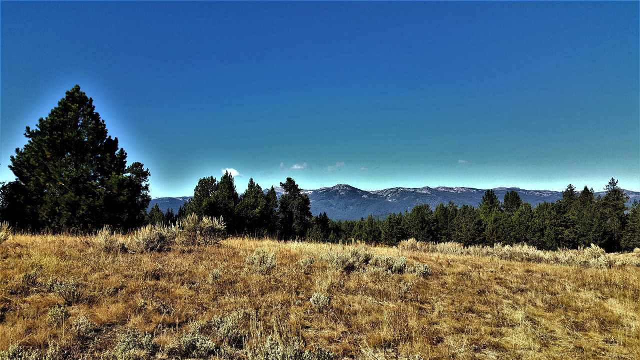 Land for Sale at 1897 Gold Dust 1897 Gold Dust Cascade, Idaho 83611