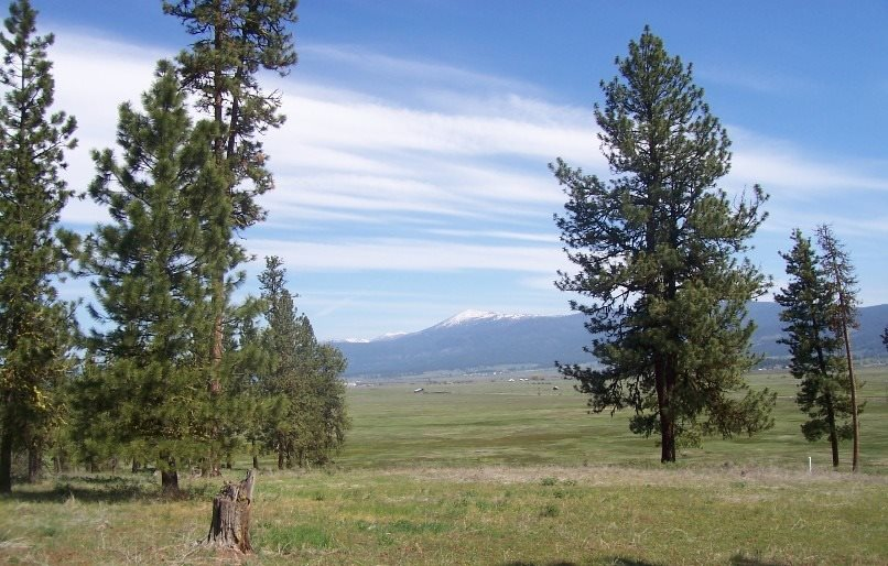 Lot 24 Timber Ridge, New Meadows, ID 83654