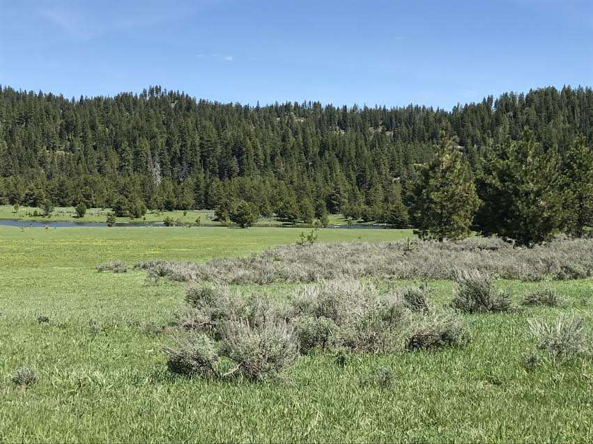 Land for Sale at #5 Parcel High Valley Rd Ola, Idaho 83657
