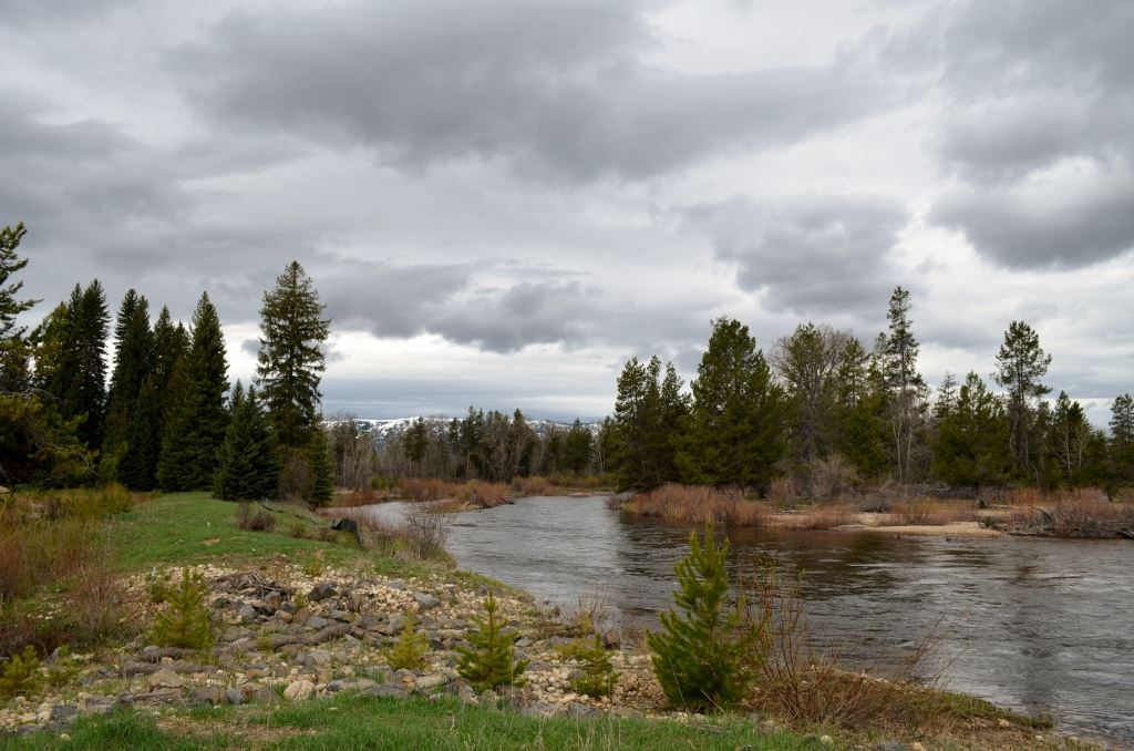 TBD Gold Fork Road,Donnelly,Idaho 83615,Land,TBD Gold Fork Road,98657349
