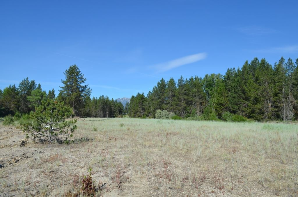 Land for Sale at TBD Monasite Dr Lt 1 Blk 1 Sub#3 TBD Monasite Dr Lt 1 Blk 1 Sub#3 Cascade, Idaho 83611