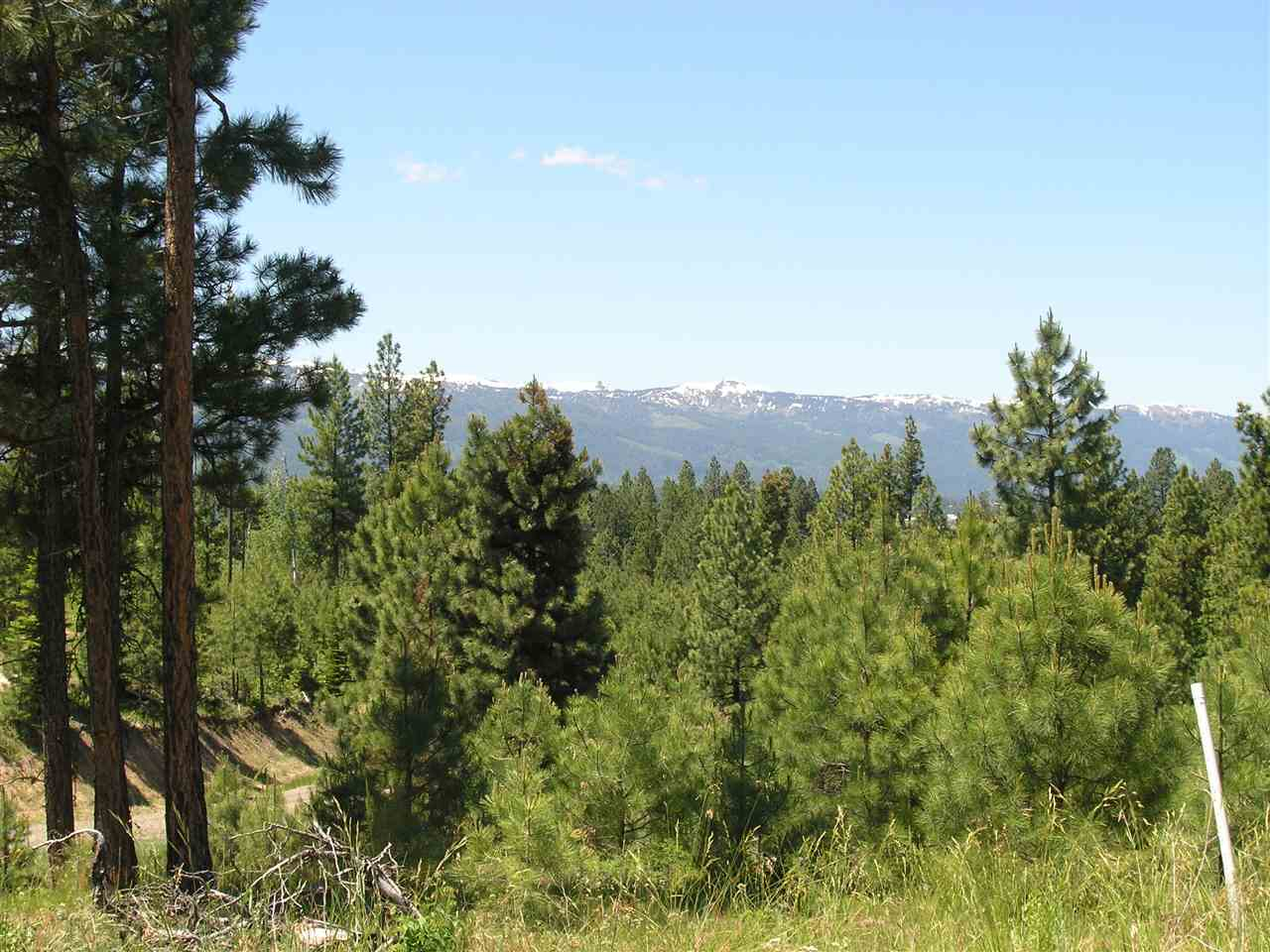 Land for Sale at Lot 11 Silver Cloud Drive Lot 11 Silver Cloud Drive Cascade, Idaho 83611