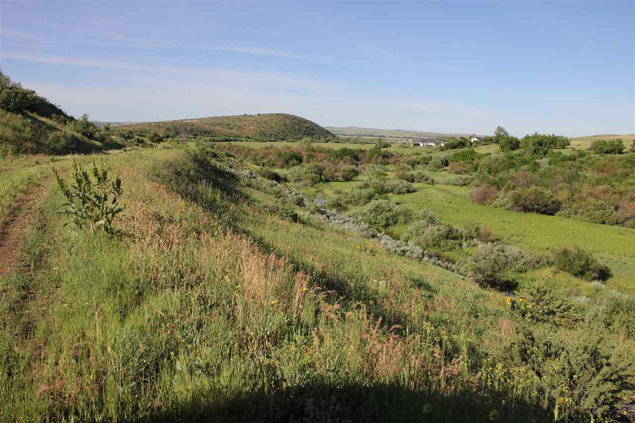TBD N Grays Creek, Indian Valley, ID 83632