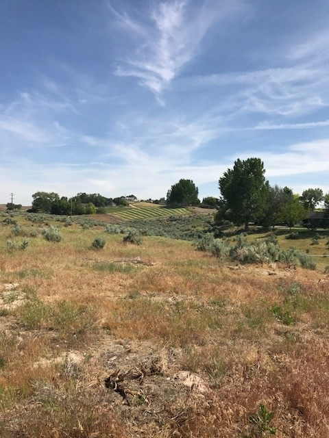 858 W Heikes Lane,Eagle,Idaho 83616,Land,858 W Heikes Lane,98658675