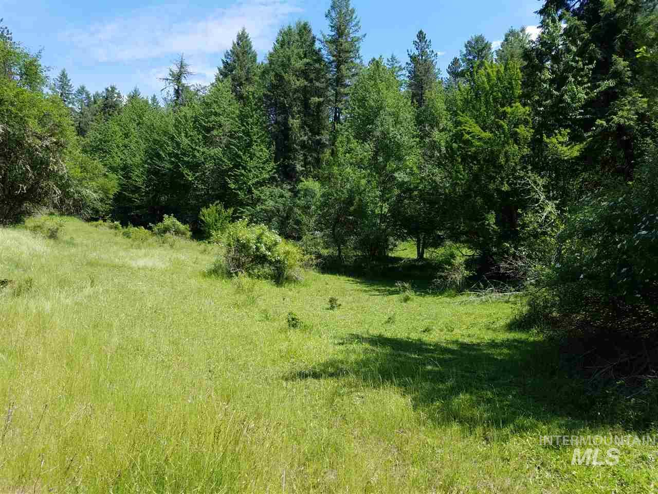 Land for Sale at TBD Hwy 13 TBD Hwy 13 Harpster, Idaho 83552