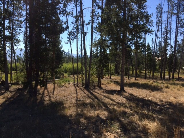Land for Sale at Tbd Sawtooth Way Stanley, Idaho 83278