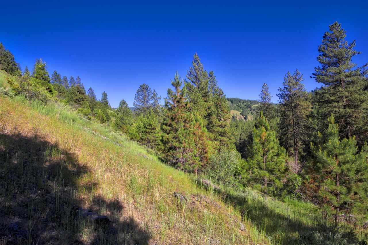 休闲地产 为 销售 在 McKinley Gulch McKinley Gulch Idaho City, 爱达荷州 83631