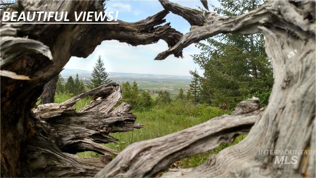Land for Sale at Lots 3,4,5,6 Elk Ridge Lane Grangeville, Idaho 83530
