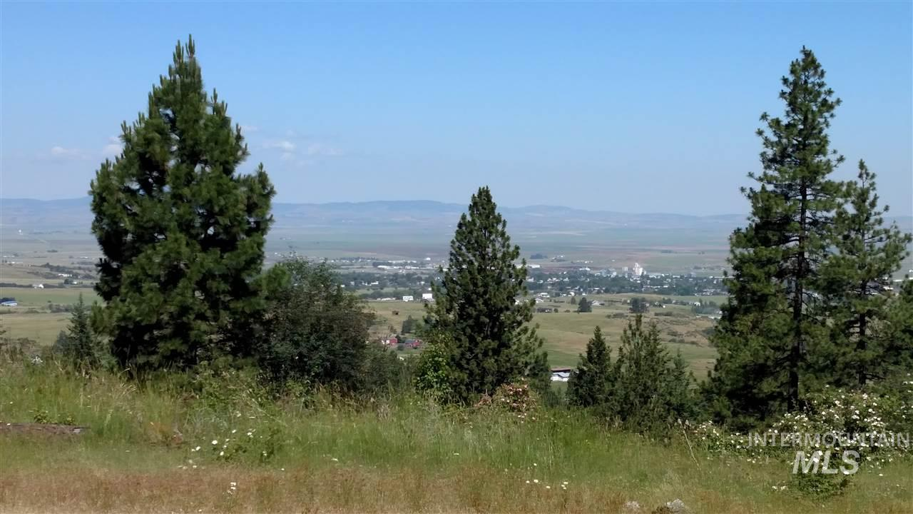 Terreno por un Venta en Lots 4 Elk Ridge Lane Lots 4 Elk Ridge Lane Grangeville, Idaho 83530